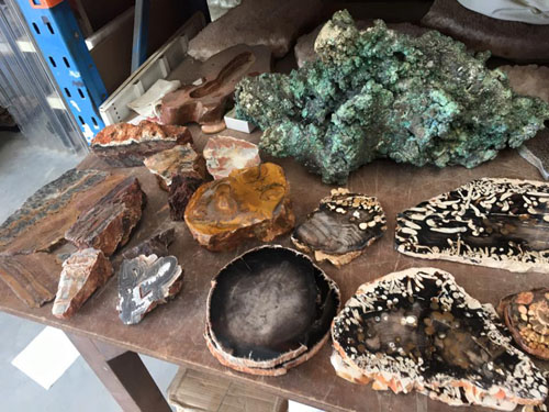 Stromatolites and fossil Wood