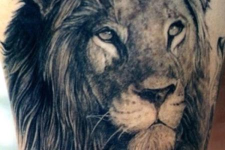 28 lion tattoo every king