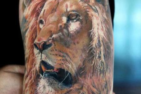 8 lion tattoo