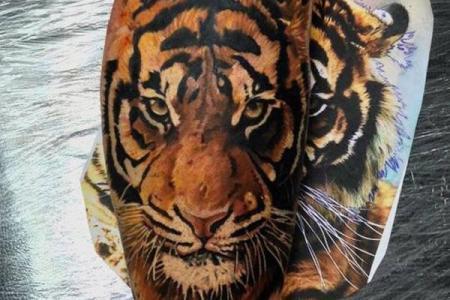 18 tiger tattoo