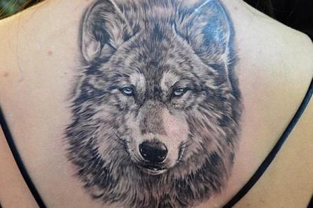 27 wolf tattoo