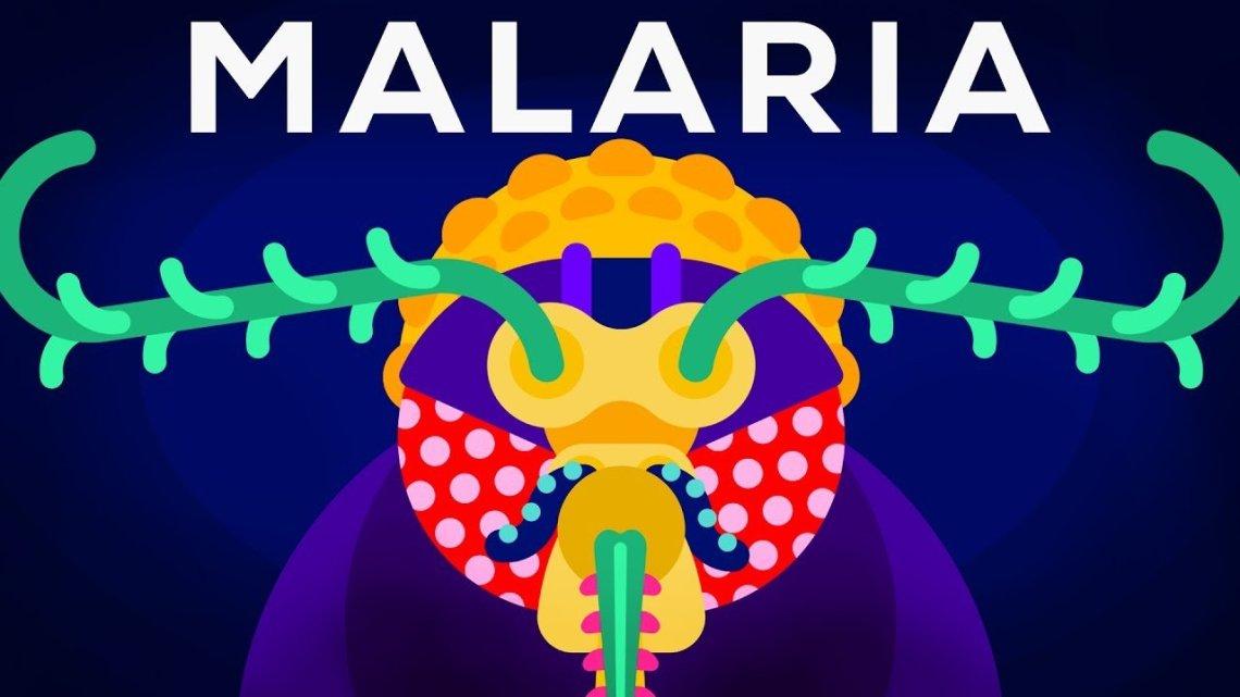 como-erradicar-la-malaria