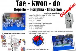 Comienzo del Taekwondo