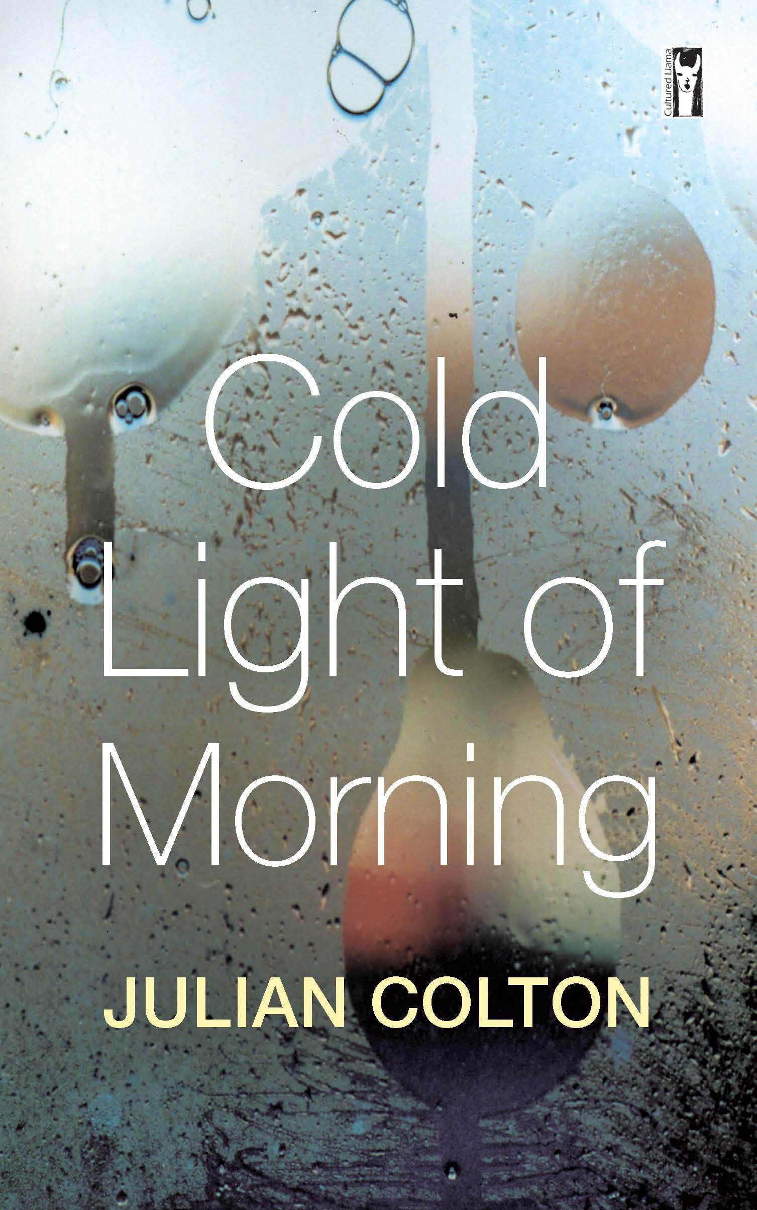 Cold Light of Morning by John Brewster