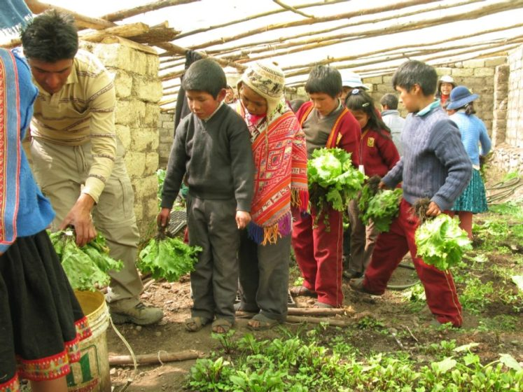 GivingWay Andean Alliance for Sustainable Development