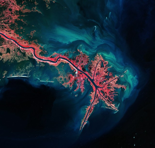 """Mississippi River Delta"" Photo: ESA http://www.esa.int/spaceinimages/Images/2012/05/Mississippi_River_Delta"