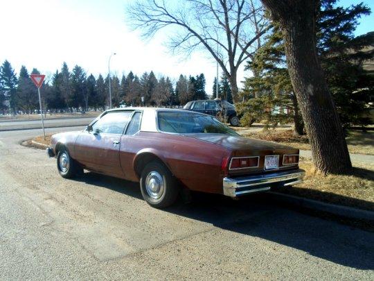 1977 Chevrolet Bel Air rear