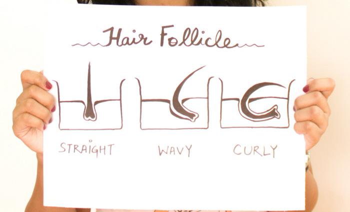 how to change hair follicle shape