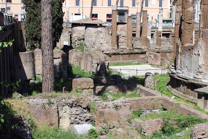 largo di torre argentina - theatre of pompey