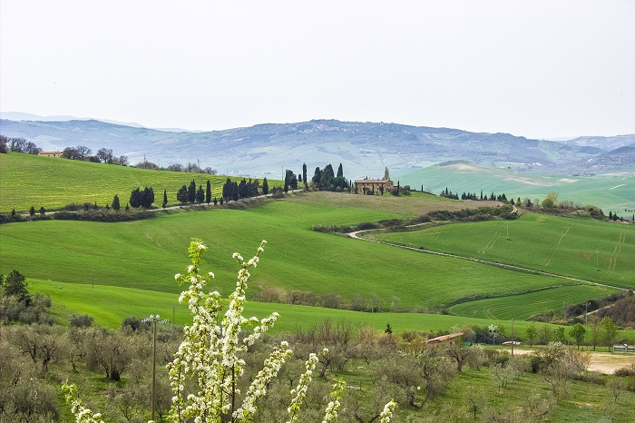 val d'orcia - tuscany postcard photo (2)