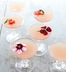 Recipe-Cocktail