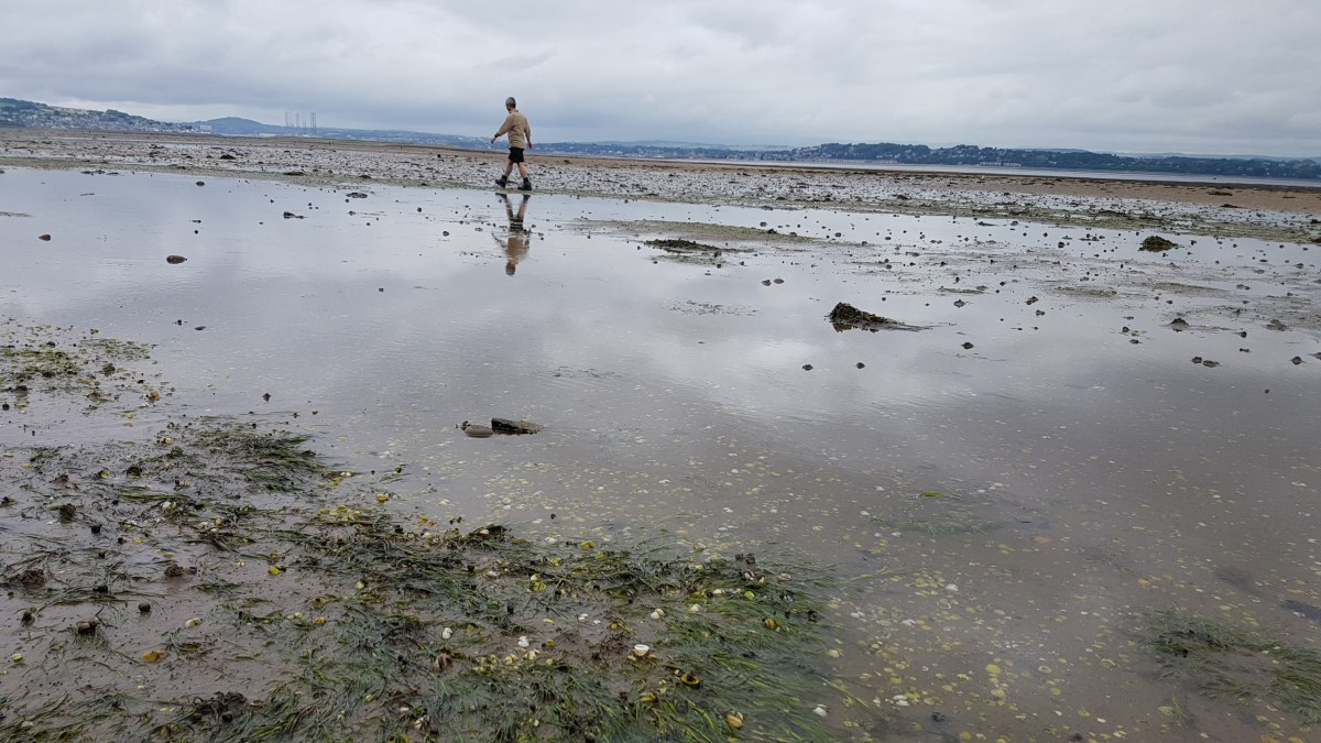 Tentsmuir Point - A Walk Along the Firth of Tay