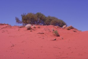 red sand, outback