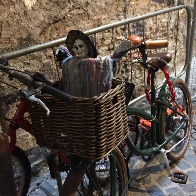 ROME bike skeleton 1