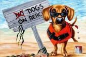 Table Positions Areas For Dog Beaches Nicosia – Area Steratzia