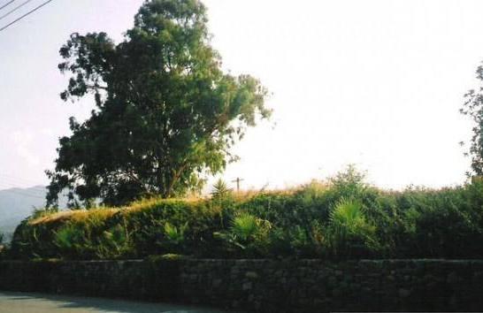 Flasu Mosque