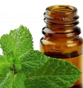 Peppermint-Essential-Oil-Headaches