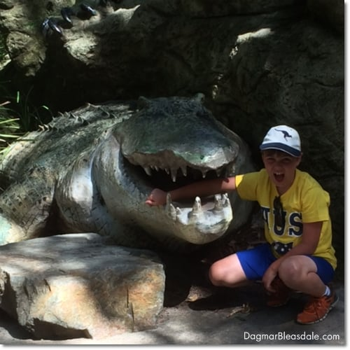 boy putting hand in crocodiles mouth