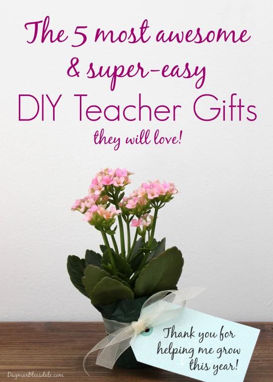 Easy DIY Teacher Gift Ideas, DagmarBleasdale.com