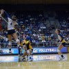 All-American Tarah Murrey notched 13 kills against Arizona and 16 kills against Arizona State this weekend.