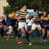 The Cal rugby team saw a 63-game winning streak snap in a 22-20 loss to Cal Poly on Saturday. Carli Baker/Staff