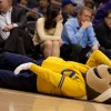 Even Oski could not believe it. Cal began the season ranked No. 24 in the country and was the top team in the Pac-12 most of the year — until the squad lost four of its last five to end the season. Marcus Gedai/Staff