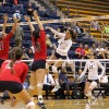 The Cal volleyball team fell in straight sets to Stanford Wednesday evening in Maples Pavilion in Stanford, Calif.
