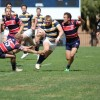 rugby arizona