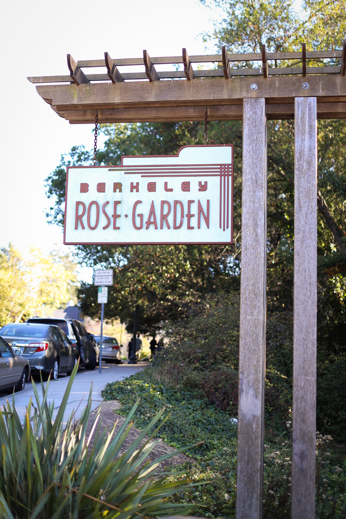 completed in 1937 the garden includes 3000 rose bushes arranged along a terraced amphitheater as well as in surrounding planters - Berkeley Rose Garden