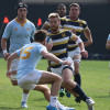 rugby_ucla