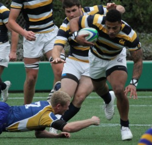 1314Rug Tandy w Walsh and Kondrat support v UBC WEB 5598-AbelBarrientes