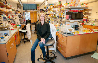 crispr_keegan_houser_ucberkeley_courtesy