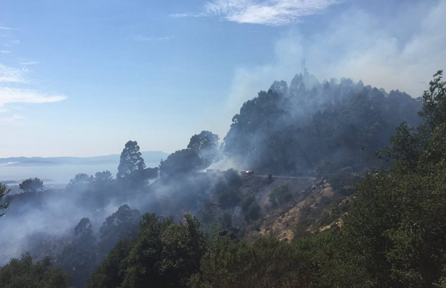 Crews contain 20-acre grass fire in Oakland hills