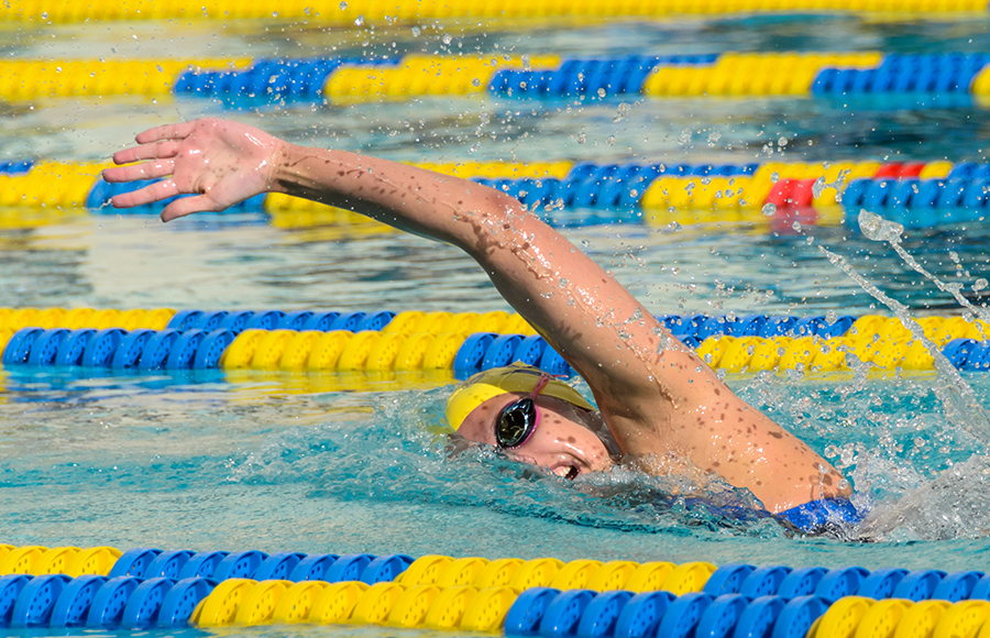 Bears bust out 13 medals at FINA World Championships