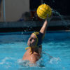 waterpolo_6_sallydowd_file-copy