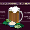 coloredited_eunicechung_beer_infographic
