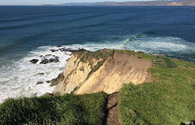 tomales-point_national-park-service-courtesy-1