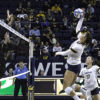 volleyball-anderson_erinhaar_file