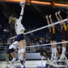 volleyball_austinshipley_file-copy-698x450