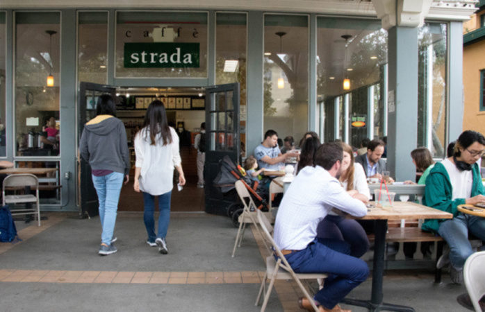 An open letter to the bees at Caffe Strada