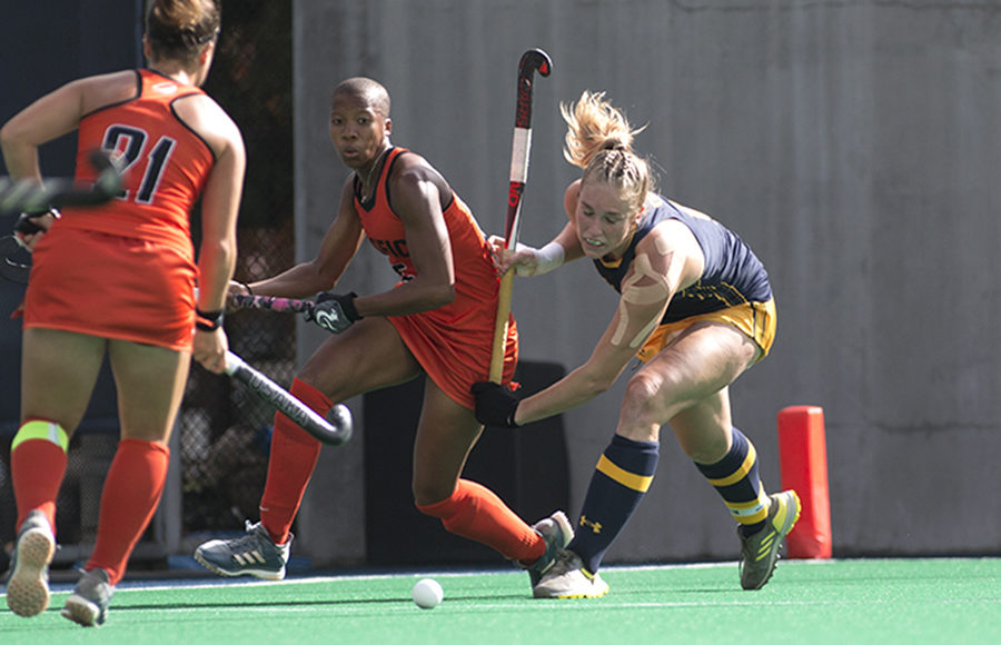 Image result for hockey field