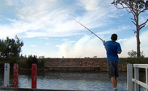 Boy fishing from pier (Photo credit: Wikipedia)