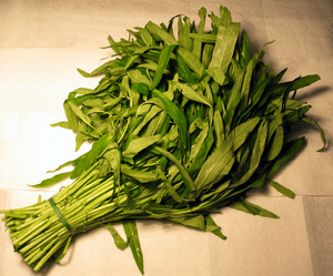 Ong choy water spinach leaf. (Photo credit: Wikipedia)