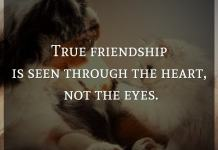 True friendship is seen through the heart, not the eyes.