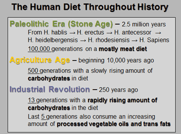 The human diet throughout history