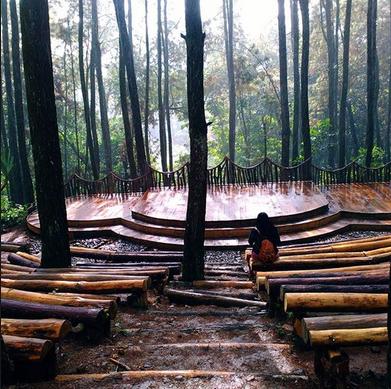 hutan pinus mangunan tempat wisata baru di jogja yang menjadi spot foto prewedding favorit
