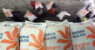 Beras Bulog (foto: radartotabuan.com)