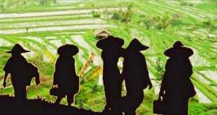 Banyak petani yang beralih ke profesi lain yang lebih menjanjikan.  (satelitpost.co)