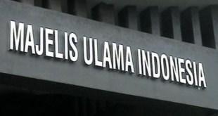 Majelis Ulama Indonesia (MUI) - liputan6.com)