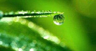 ilustrasi, sebening air (embunhati.com)